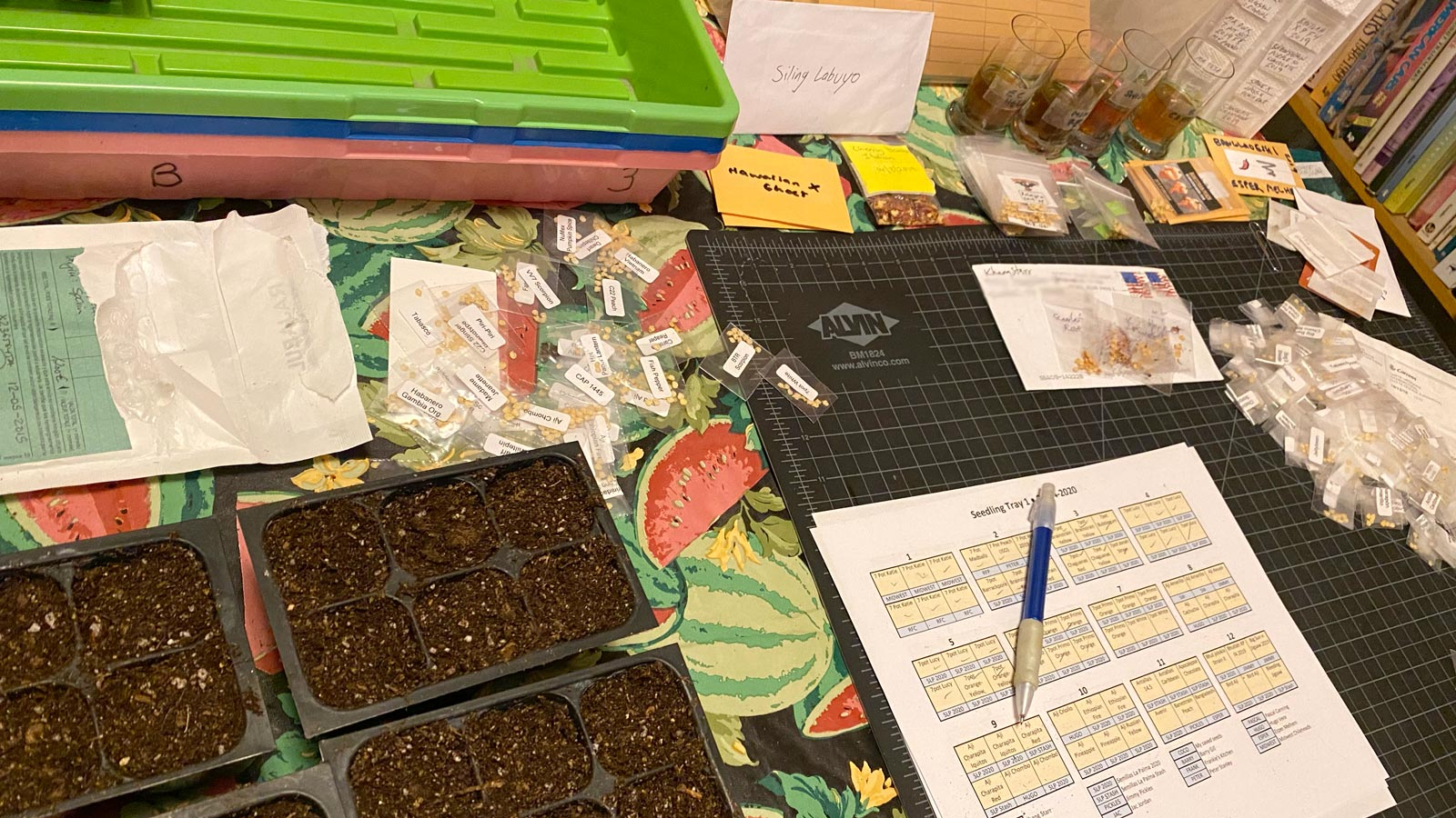 Photo of table covered with packets of seeds, trays, and potting mix
